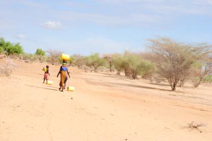 Vipeika Garden que da alimentos a Turkana